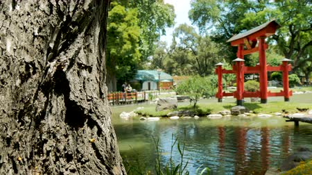 Pagoda in the Japanese Garden (Jardn Japons) in Buenos Aires, capital of Argentina. Стоковые видеозаписи