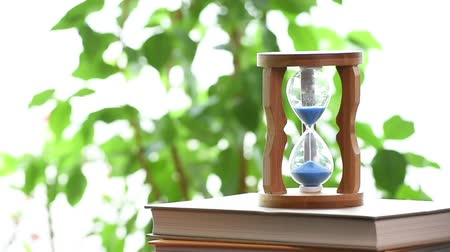 realtime : Real time. An hourglass with a blurry tree leaf. With copy space.