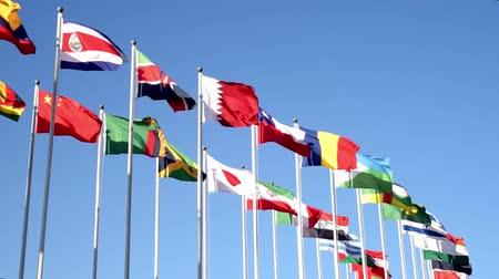 Flags of many states are fluttering on flagpoles. Stok Video