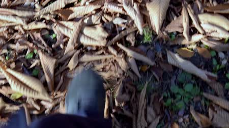 A mans feet that walk along the road stacked with leaves. Slowmotion.