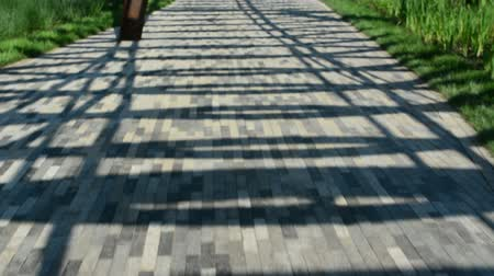 paving : Abstract architectural metal design on the park walking trail. Stock Footage