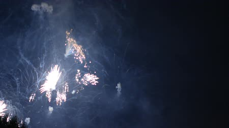 pyrotechnics : beautiful fireworks show in the night sky Stock Footage