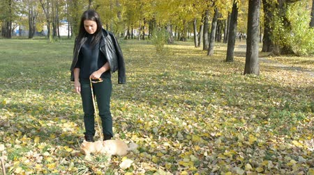 ronronar : Girl walking with a cat on a leash in the autumn Park