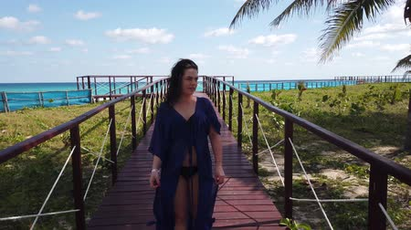 haven : Tropical beach and turquoise ocean Stock Footage
