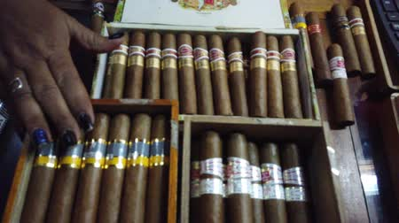 курильщик : HAVANA, CUBA - APRIL 2019: Customers choose cigars in the store. Cuban cigars in Havana city store
