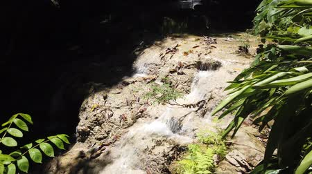 zuhatag : Forest Mountain Stream. Forest River. Mountain River. Water. Cascade Waterfall. Beauty in nature. Landscape. Pure Fresh Water Waterfall In The Mountains