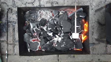 chuches : Grilling Marshmallow after barbecue camping 4K