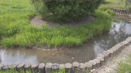 beside : River stream view with green grass besides
