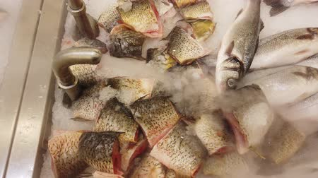 проданный : Fresh fish is cooled on the supermarket counter. Fresh raw fish on counter at food market. Стоковые видеозаписи