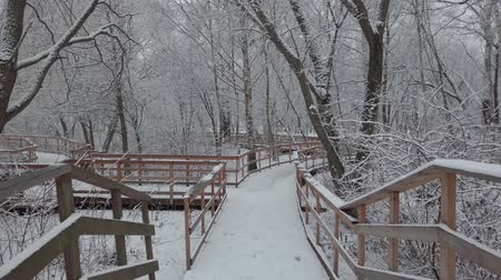febrero : Winter day, a lot of fresh snow fell. The movement of the camera along the wooden bridge through the park.