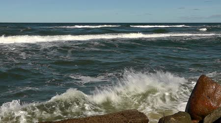 baltık : Baltic sea coast Stok Video