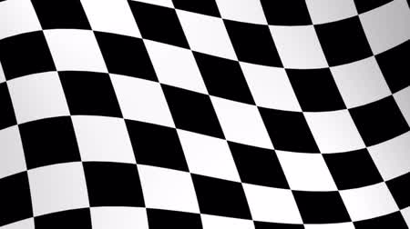 vencedor : Racing Flag - 3d animation, seamless loop