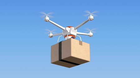paket : Quadrocopter with cardboard package, 3d animation Stok Video