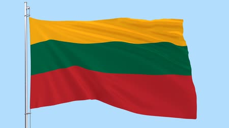 lietuvos : Flag of Lithuania on a flagpole fluttering in the wind on a transparent blue background, 3d rendering, PNG format with ALPHA transparency channel