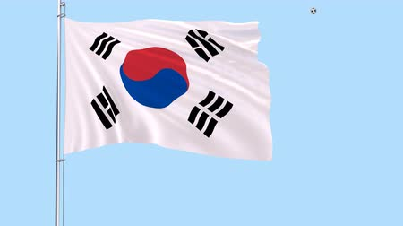yin yan : A realistic soccer ball flies around the realistically fluttering flag of South Korea on a transparent background, 3d rendering, PNG format with Alpha channel transparency Stock Footage