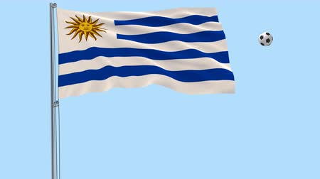 png : Realistic fluttering flag of Uruguay and soccer ball flying around on a transparent background, 3d rendering, PNG format with Alpha channel transparency Stock Footage