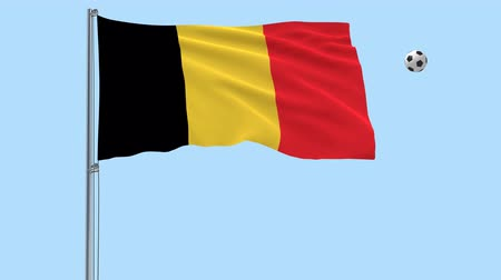 png : Realistic fluttering flag of Belgium and soccer ball flying around on a transparent background, 3d rendering, PNG format with Alpha channel transparency Stock Footage