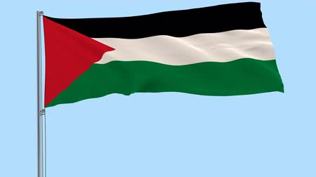 filistin : Isolate flag of Palestine on a flagpole fluttering in the wind on a transparent background, 3d rendering, PNG format with Alpha channel transparency