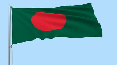 bengali : Isolated large cloth in the colors of Bangladesh on a flagpole fluttering in the wind on a transparent background, 3d rendering, PNG format with Alpha channel transparency. Stock Footage
