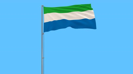 sierra leone flag : Flag of Sierra Leone on the flagpole fluttering in the wind on a transparent pure blue background, 3d rendering, png