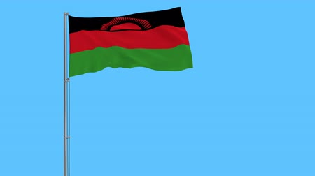 malawi : Isolate flag of Malawi on a flagpole fluttering in the wind on blue background, 3d rendering