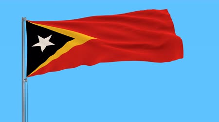 east timor : Flag of the Republic of the Timor-Leste on the flagpole fluttering in the wind on a transparent background, 3d rendering, Stock Footage