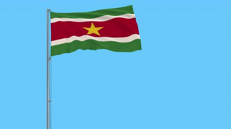 paramaribo : Isolate flag of Suriname on a flagpole fluttering in the wind on a transparent background, 3d rendering, 4k