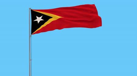 east timor : Isolate flag of the Republic of Timor-Leste on the flagpole fluttering in the wind on a transparent background, 3d rendering,