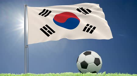 seoul : Flag of South Korea fluttering and a football rolls on the lawn, 3d rendering, 4k footage