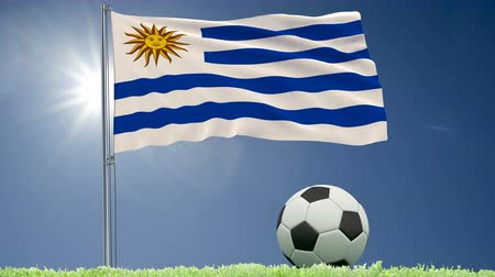 felhőtlen : Flag of Uruguay fluttering and a football rolls on the lawn, 3d rendering, 4k footage