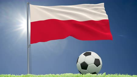 tournament : Flag of Poland fluttering and a football rolls on the lawn, 3d rendering, 4k footage Stock Footage