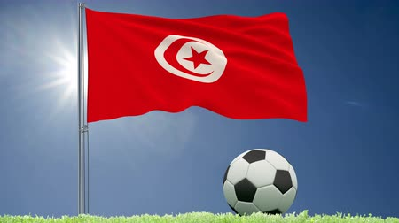 başkan : Flag of Tunisia fluttering and a football rolls on the lawn, 3d rendering, 4k footage Stok Video