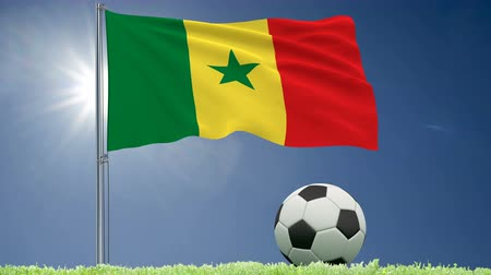 felhőtlen : Flag of Senegal fluttering and a football rolls on the lawn, 3d rendering, 4k footage