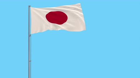 tokyo government : Isolate flag of Japan on a flagpole fluttering in the wind on a transparent background, 3d rendering, 4k prores footage, alpha transparency