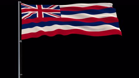 proportions : Isolate flag of United States Hawaii on flagpole fluttering in wind, 3d rendering, 4k prores 4444 footage with alpha transparency