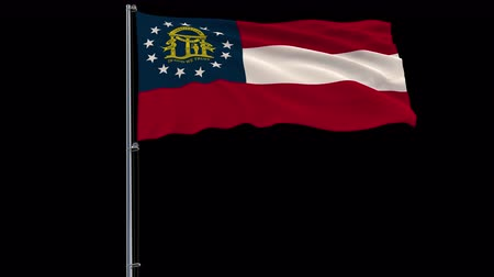 áttekinthetőség : IIsolate flag of United States Georgia on flagpole fluttering in wind, 3d rendering, 4k prores 4444 footage with alpha transparency Stock mozgókép