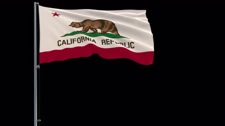 áttekinthetőség : IIsolate flag of United States California on flagpole fluttering in wind, 3d rendering, 4k prores 4444 footage with alpha transparency Stock mozgókép