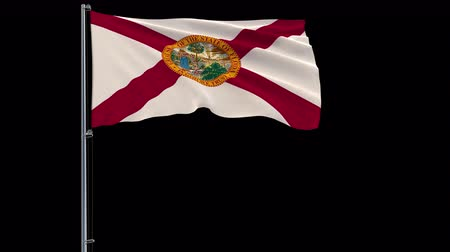 áttekinthetőség : IIsolate flag of United States Florida on flagpole fluttering in wind, 3d rendering, 4k prores 4444 footage with alpha transparency