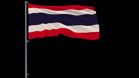 monarchy : Isolate big flag of Thailand, on a flagpole fluttering in the wind on a transparent background, 3d rendering, 4k prores 4444 footage with alpha transparency Stock Footage