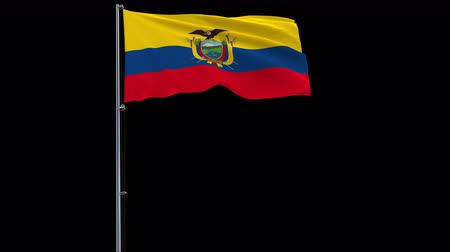 quito : Isolate big flag of Ecuador on a flagpole fluttering in the wind on a transparent background, 3d rendering, 4k prores 4444 footage with alpha transparency Stock Footage