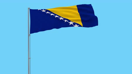 herzegovina : Isolate flag of Bosnia and Herzegovina on a flagpole fluttering in the wind on a transparent background, 3d rendering, 4k prores footage, alpha transparency Stock Footage