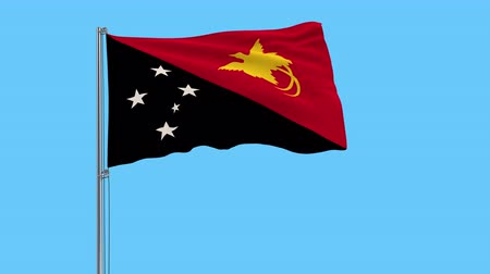 monarchy : Large cloth Isolate flag of Papua New Guinea on a flagpole fluttering in the wind on a transparent background, 3d rendering, 4k prores footage, alpha transparency