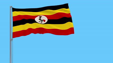 proportions : Isolate flag of Uganda on a flagpole fluttering in the wind on a transparent background, 3d rendering, 4k prores footage, alpha transparency