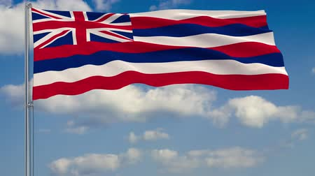 standart : Flag of Hawaii - US state fluttering in the wind against a cloudy sky