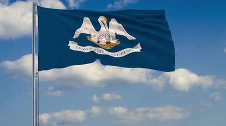 румяна : Flag of Louisiana - US state fluttering in the wind against a cloudy sky Стоковые видеозаписи