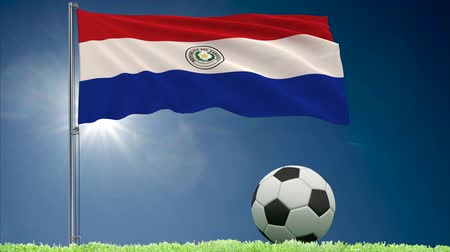 bulutsuz : Flag of Paraguay fluttering and a football rolls on the lawn, 3d rendering Stok Video