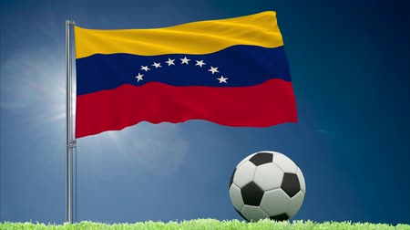 felhőtlen : Flag of Venezuela fluttering and a football rolls on the lawn, 3d rendering Stock mozgókép