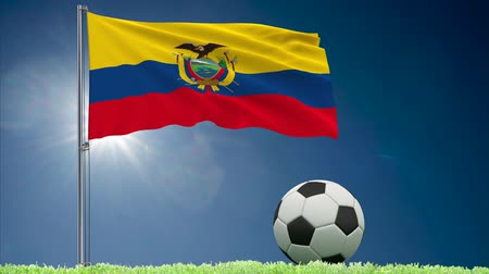 quito : Flag of Ecuador fluttering and a football rolls on the lawn, 3d rendering