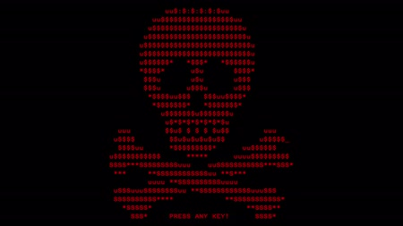 petya : Computer screen with virus attack by virus, image created by virus on screen of computer monitor Stock Footage
