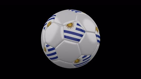 montevideo : Soccer ball with the flag of Uruguay colors rotates on transparent background, 3d rendering, loop, 4k prores footage with alpha channel Stock Footage